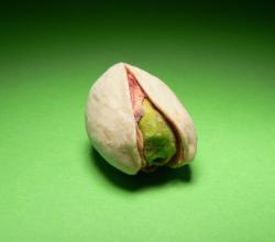 Pistachio Nuts and the Salmonella Scare