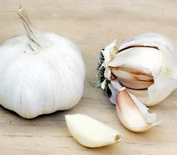 Benefits of Raw Garlic