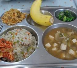 School Cafeteria meals from around the World