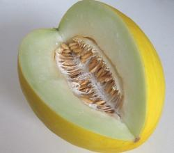 Gingered Honeydew Melon