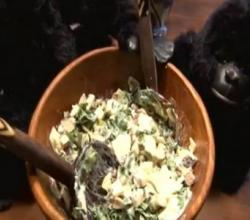Gorilla Salad: Kale-Apple Slaw with Toasted Hazelnuts (and Honey-Yogurt Dressing)