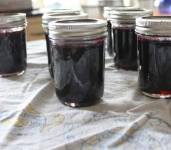 Spiced Grape Jam