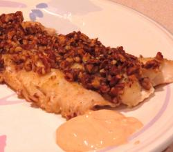 Haddock with Pecan Coating