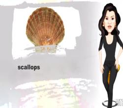 Hints and Tips for Selecting Scallops
