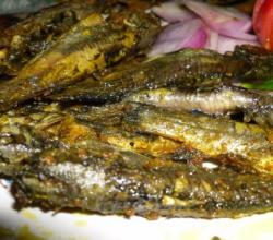 Hot Masala Fried Fish