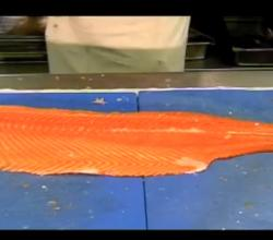 How To Cut A Salmon Supreme From A Fresh Salmon