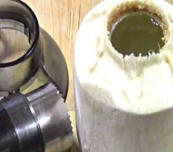 How to Open a Young Coconut With A Coconut Cutter