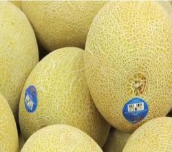 How to Tell If A Melon is Ripe: Fairway Market's Anthony Romano on The Beauty of Galia Melons