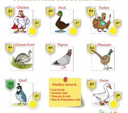 Poultry Foods - Which Is The Most Nutritious