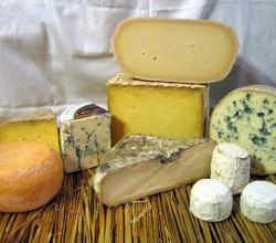 Different Cheeses To Entertain Your Guests This Holiday Season