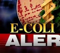 E-Coli Infection: A Threat To US Too?