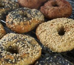 Gluten Free Bagel Health Benefits