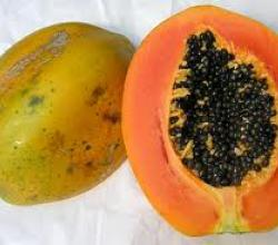 Papaya Medicinal Uses