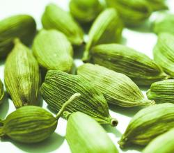 What Are The Health Benefits Of Cardamom