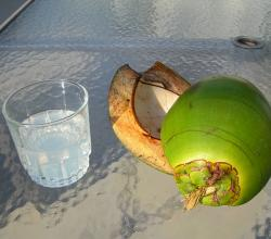 What Is The Difference Between Coconut Water & Juice
