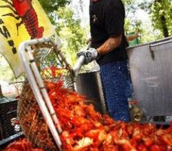 Enjoy The Seafood With Louisiana Crawfish Festival