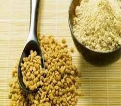 Fenugreek Powder – Usage & Benefits