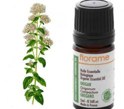 Use Oregano Oil To Fight Harmful Bacteria