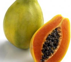 Mexican Papaya A Source Of Salmonella Now!