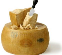 What Are The Uses Of Parmesan Cheese