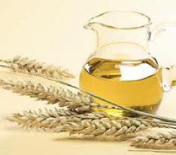 Wheat Germ Oil For Hair Care