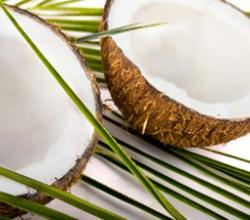 How To Eat A Coconut? –  The All-In-All Edible Fruit