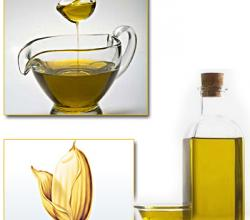 How to store rice-bran oil? – The unsurpassed cooking oil towards greater shelf life