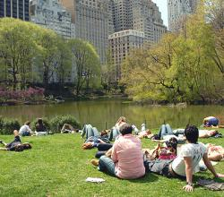 Where To Buy Food For A Central Park Picnic
