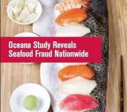 Seafood Fraud Uncovered In Big Apple