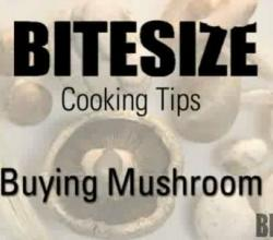 Mushrooms - Uses and Methods