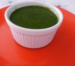Mint Chutney with fresh Mint