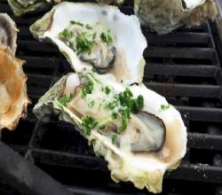 Oyster Diaries - How To Shuck An Oyster, How To Steam An Oysters