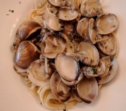 Pasta with White Clam