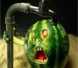Fruit Art - Watermelon Taking Bath