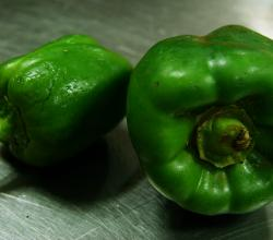 Capsicum