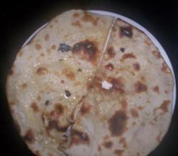 Roti Or Indian Flat Bread
