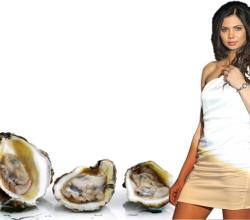 Sharmila Nicollet With Oysters