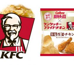 The Revolutionary Chicken Flavored Potato Chips