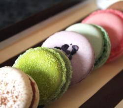 Macaron Assortment in Row
