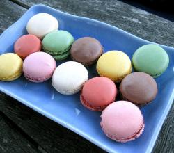 Macarons on a Blue Rectangular Plate