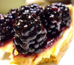 Mexican blackberry tart