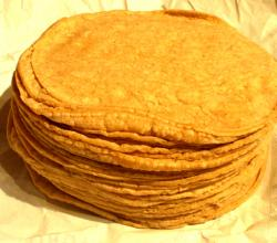 Quick Corn Tortillas