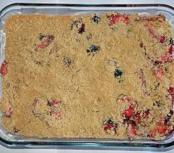 Plum Crumble Slice