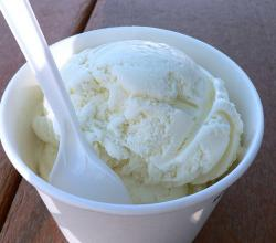 Quick & Easy Vanilla Ice Cream