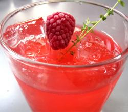Raspberry Refresher