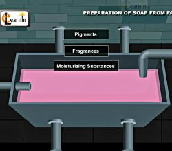 Preparation of Soap from Fat - Chemistry