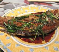 Stuffed Black Bass