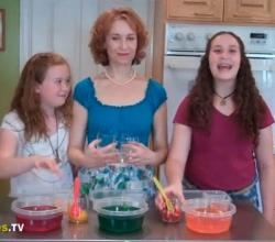 Super Cool Jell-O lunchbox idea with Kelly Lester