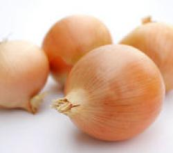 Fight Cancer with Onion and Garlic