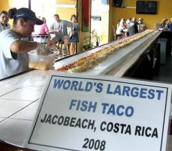 Junk Food World Records !
